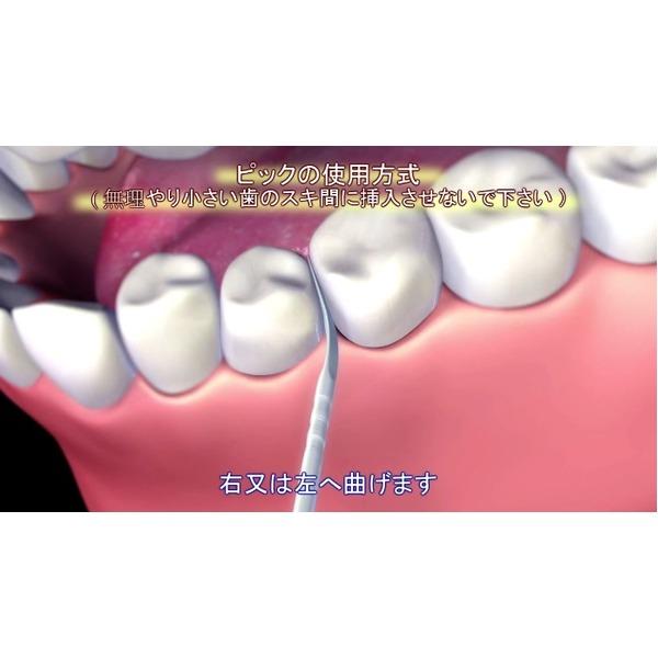 爪楊枝型歯間ブラシ「ブラッシュピックス40本」×10個セット(計400本)