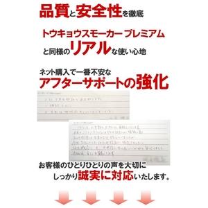 【電子タバコ】トウキョウスモーカー(東京スモーカー)ゼロ TS-ZERO本体+ケース(ゴールド)セット