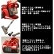 竜巻サイクロン掃除機 サイクロニックマックス ワインレッド 写真3