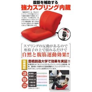 腹筋座椅子 アブキューティー レッド