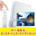 30,000円 Wii本体【シロ】&モンスターハンター3(トライ) セット