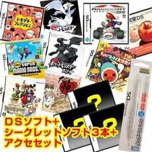 任天堂 DS 大神伝 ~小さき太陽~ + シークレットソフト3本 + アクセセット セット