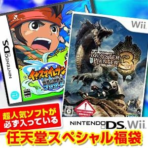 任天堂スペシャル福袋 Wii モンハントライ + DS イナズマイレブン2 〜脅威の侵略者〜 ブリザード + 人気ソフト3本