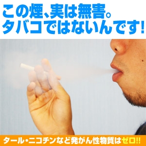 電子タバコ「デジタルタバコ/デジモク」特別本体セット カートリッジ50個付(ノーマル味) 通販、販売