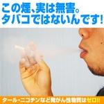 デジモクDIGITAL TABACCO DIGIMOKU販売価格 11277円