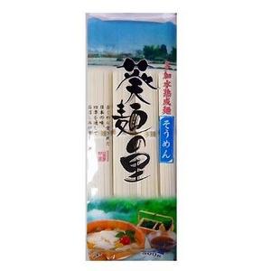 葵フーズ 葵麺の里 そうめん 360g 20個セット