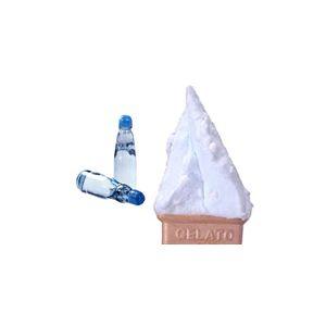 業務用アイス バニラ&ラムネセット (2L×2 計4L)