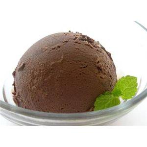 業務用アイス ベルギーチョコレート&モカクランチナッツセット (2L×2 計4L)