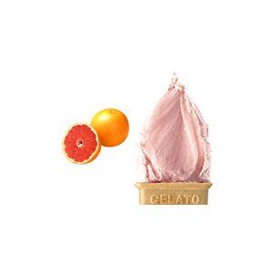業務用アイス モカクランチナッツ&レッドグレープフルーツセット (2L×2 計4L)