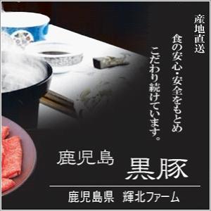 鹿児島黒豚 輝北豚 とんかつ用(単品) 肩ロース500g