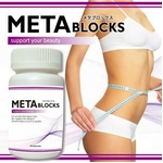 メタブロックス