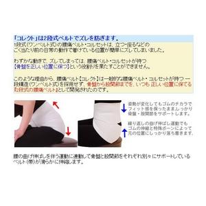 腰痛ベルト コレクト メッシュタイプ L