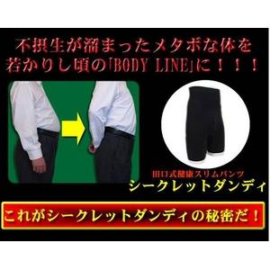 田口式健康スリムパンツ 【シークレットダンディ Lサイズ】 - 拡大画像