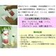 【業界初】5%アルコール消毒液500mlスプレー(2本セット) 写真2