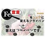 軽量鉄鋳物フライパン FE宣言 26cm 1個