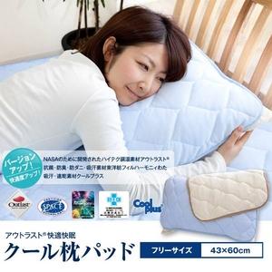 2010年版☆アウトラスト(R) 快適・快眠 クール枕パッド ブルー - 拡大画像