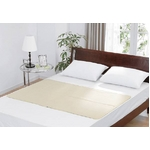 ヒラカワ|洗えるひんやりジェルマット ダブルセット(ダブル+枕)|2010年版