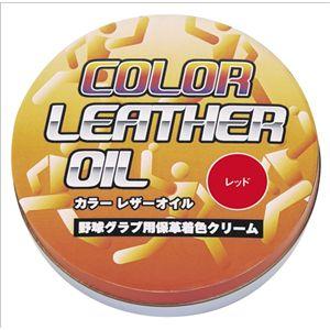 リーグスター カラーオイル LYZ-K02 レッド 【4個セット】