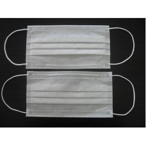 【BFE99%以上】米国ネルソン研究所認定の3層不織布マスク「EARLOOP」300枚入り