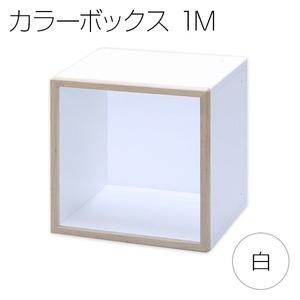 カラーボックス キューブボックス ディスプレイボックス IKO-BOXイコウボックス 1M 白(片面タイプ)