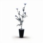 風景専門店あゆわら 《人工観葉植物・造花》Cosmos Bipinnatus(コスモス/秋ざくら)