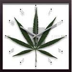 F-style Clock Cannabise Sativa(カンナビス・サティバ/大麻草)