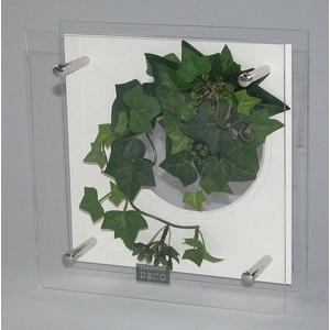 風景専門店あゆわら 《プラントフレーム》HEARTFUL PLANTS 0129(グリーンアイビー) - 拡大画像