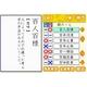 ニンテンドーDS 250万人の漢検〜新とことん漢字脳〜47000+常用漢字辞典四字熟語辞典 写真3
