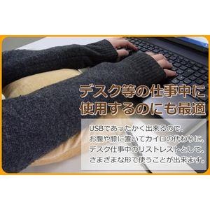 SunRuck(サンルック) USB あったか クッション 腰当て用 腕用 PC用 カイロとして SR-UCS01