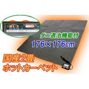 三京 電気ホットカーペット HT-20 ダニ退治機能付