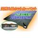 三京 電気ホットカーペット 3畳用 HT-30 ダニ退治機能付 写真1
