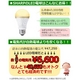 SHARP シャープ 昼白色LED電球 スタンダードモデル 600シリーズ DL-L601N 写真2