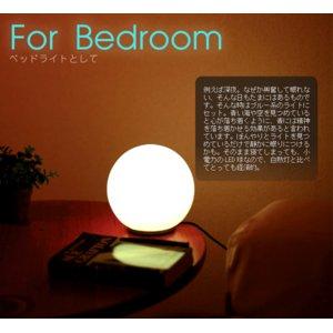 おしゃれな部屋作りに PRISMATE(プリズメイト) LEDイルミネーションライト 調光16色 20cm