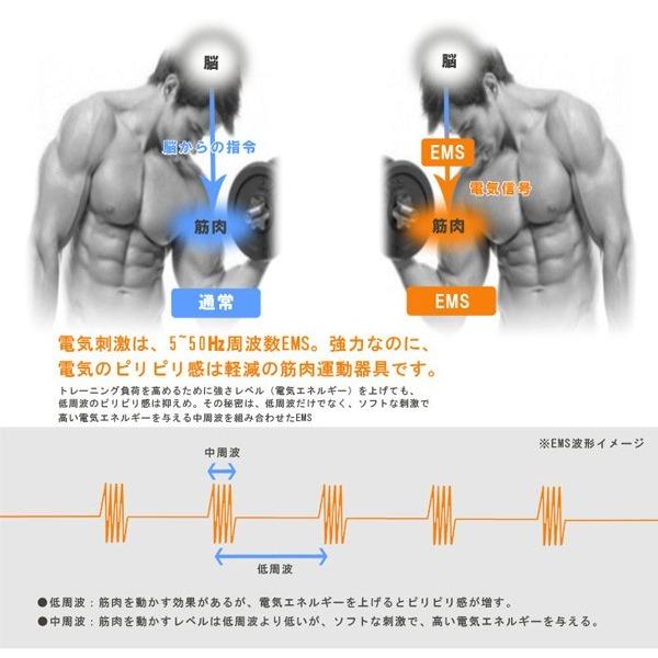 アクティブパッド EMS 腹筋ベルト 段階パワー ボディ用 貼るだけトレーニング