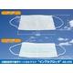 3層医療用サージカルマスク 「インフルブロック」AN-N95 1000枚セット  写真2