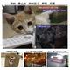 【小型カメラ】液晶ファインダー付 デジタル ビデオカメラ ちびカムHD G200 写真5