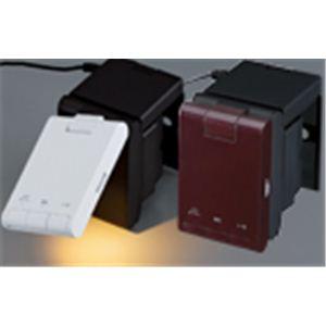 TWINBIRD(ツインバード) LEDベッドライト LE-H223B ブラウン