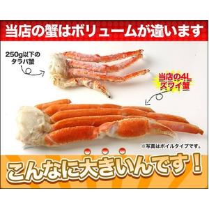ボイルずわい蟹 4Lサイズ どーんと2kg!(5~6肩)