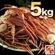 【訳あり】生ずわい蟹 極太 5kg 【15肩前後入り】  写真2