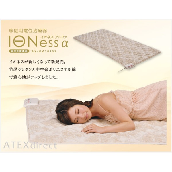 家庭用電位治療器 IONess α「イオネス アルファ」 (シングル)の写真