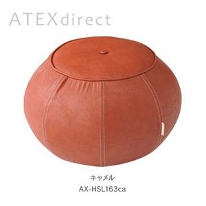ATEX(アテックス) ルルド バランスツール LX AX-HSL163ca / キャメル