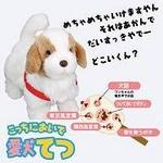 【TVで紹介!!】こっちにおいで 愛犬てつ