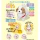 【TVで紹介!!】こっちにおいで 愛犬てつ 写真5