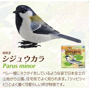 愛鳥倶楽部 ヒーリングバード03 シジュウカラ - 拡大画像
