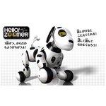 オムニボット(Omnibot)シリーズ Hello!zoomer(ハローズーマー)