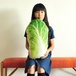 リアルクッション 白菜