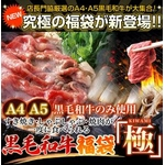 【某高級焼肉店に卸しているA4・A5等級のみ】黒毛和牛究極福袋 1.8kg
