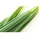 京都どんぐり 京野菜の入った京風お好み焼 ブタ玉・イカ玉 各5枚セット (計10枚) 写真5