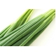 【訳あり 賞味期限間近のため大セール!京都どんぐり】 京野菜の入った京風下町お好み焼セット 10枚入 一度食べて頂ければわかるこの美味しさ 写真5