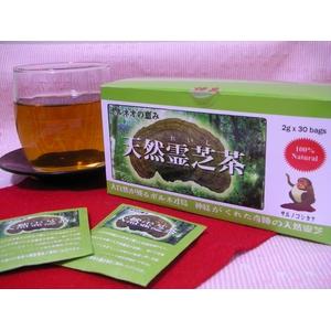 天然霊芝茶「神泉」 10箱セット - 拡大画像